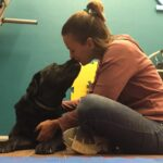 NOVITA' 2021 – Trattamento Osteopatico per cani in sede a Rozzano!